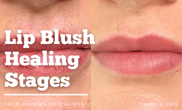 Lip Blush Healing Stages